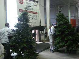 christmas tree recycling underway baldwin park ca patch