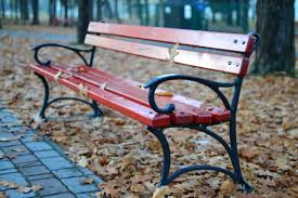 black and red park bench near grey concrete pathway free stock photo