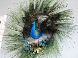the elegant appearance of using peacock decorations for home