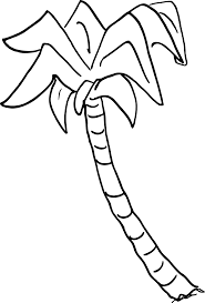 palm tree svg palm tree clipart