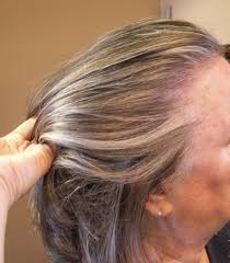 doing low lights on gray hair lowlights and highlights added to grey hair hair by janet the