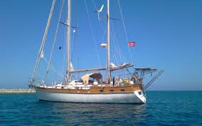 si e social petit bateau certificat de pavillon pour les yachts et petits bateaux