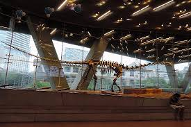 amazing dinosaur picture of perot museum of nature and science