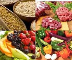 ottawa valley dog whisperer fresh raw and whole food for your