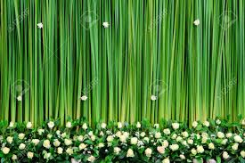 wedding backdrop green green backdrop flowers arrangement for wedding ceremony stock