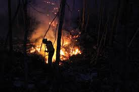 Graham Wa Wildfire by Answering The Call Missouri Department Of Conservation