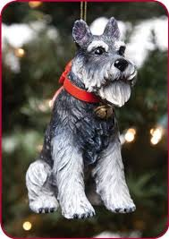 194 best dogs images on schnauzers