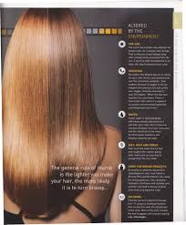 causes of brassy hair color neilgeorgesalon very little of this