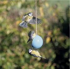 having a fat ball bird cake feeder is a great way of attracting