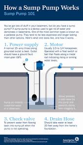 sewage backup causes and prevention msz