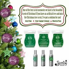 322 best scentsy fragrance images on scentsy business