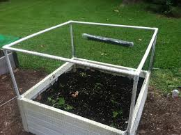 how to make deer exclosure for raised beds