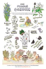 products the puddle garden a children u0027s book about native