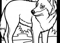 wolf coloring pages wallpaper download cucumberpress