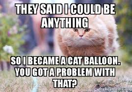 Balloon Memes - they said i could be anything so i became a cat balloon you got a