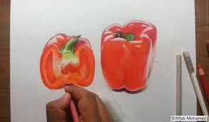 drawing capsicum fruit series 3 prismacolor colored pencils