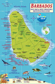 Shark Map Of The World by Dive Sites Dive Barbados Blue