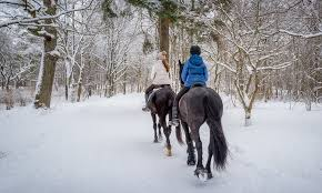 horseback trail rides this is the place heritage park
