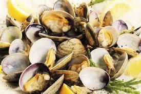 cuisiner des fruits de mer fruits de mer coquillages et crustacés un petit mémo pour