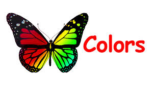 learn colors butterfly coloring pages toddler learning video