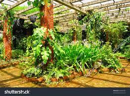 garden design garden design with winter flowering woody plants
