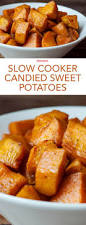 sweet potatoes recipes for thanksgiving best 25 slow cooker sweet potatoes ideas on pinterest crock pot
