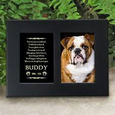 Personalized Dog Photo Album 13 Best Personalized Horse Lover Gifts Images On Pinterest