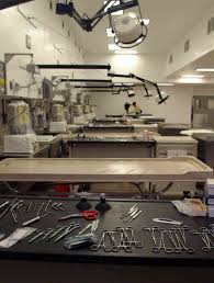 the tables are set i wish my prep room look like that lol