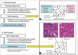 journal of pathology informatics browse articles