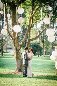 wedding decorations for trees search forrest