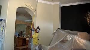 Interior Painting Tampa Fl Polson Painting In Tampa Fl Youtube