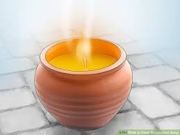 How To Keep Mosquitoes Away From Backyard How To Keep Mosquitoes Away 15 Steps With Pictures Wikihow