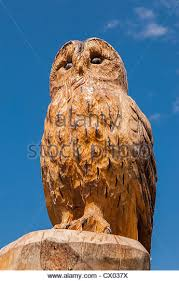 owl wood carving carved owl wood stock photos carved owl wood stock images alamy
