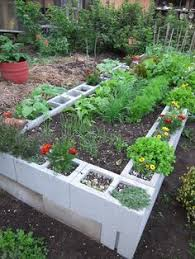 Lifetime Raised Garden Bed Texas Gardening Forum Raised Bed Garden All Things Plants