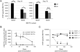 design pc gehã use lasting antibody responses are mediated by a combination of newly