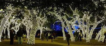 johnson city christmas lights christmas in johnson city snap nb