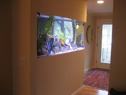 Beige Paint Furniture Fascinating Fish Tank Room Divider With Ceiling