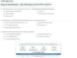 quiz u0026 worksheet u2013 the nitrogen and carbon cycles study