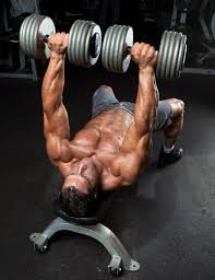 Good Weight For Dumbbell Bench Press How To Do The Dumbbell Bench Press Muscle U0026 Performance