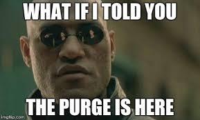 Purge Meme - matrix morpheus meme imgflip