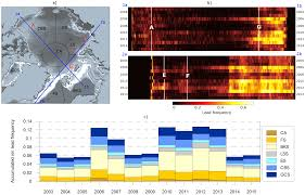 remote sensing free full text sea ice wintertime lead