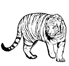 happy tiger coloring pages 41 4239