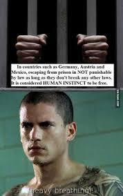 Prison Break Memes - i would definitely have to go with t bag that asshole comment