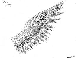 Bird Wing - bird wing reference by envy on deviantart