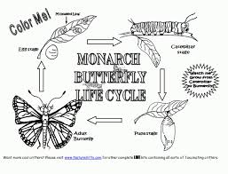 butterfly life cycle coloring page az coloring pages within