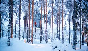 treehotel the perfect holiday hideaway swedish lapland