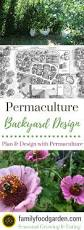 permaculture garden layout backyard permaculture design