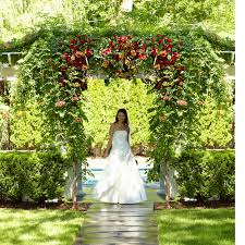Wedding Flowers Omaha Best Wedding Florists In Omaha Terryl U0027s Flower Garden