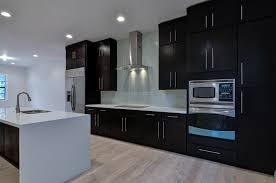 modern kitchens kitchen designs and on pinterest idolza