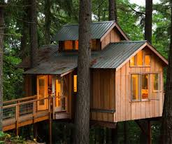 treehouses for adults design of your house u2013 its good idea for